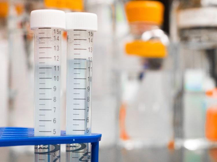 NFES (lab image)