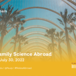 Valencia Study Abroad ad featuring palm trees